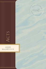 Our pastor is doing a study in Acts verse by verse. This would be a great personal help-book to it.