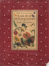 """Half my lifetime ago, I found this in a bookshop but it was too much for purse. I made a note down in a notebooks to find this again someday, and to only read """"the illustrated version"""". Now I have it for my own, and I think the cover looks enchanting!"""